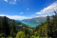 Die Schöne und das Biest Musical in der Schweiz